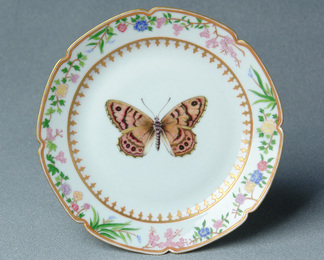 Flora and Fauna Dinner Service