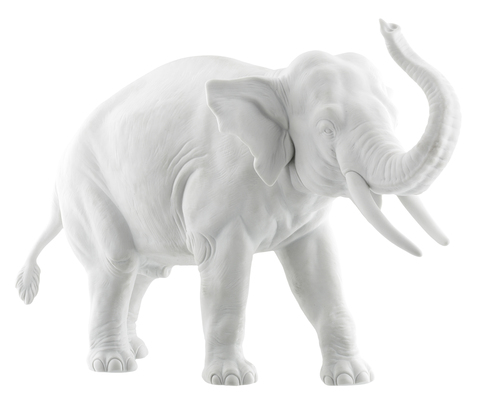 18604_elephant_trunk_up_white_bis-1_copy_main