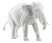 18605_elephant_trunk_down_white_bis-1_copy_small_carousel