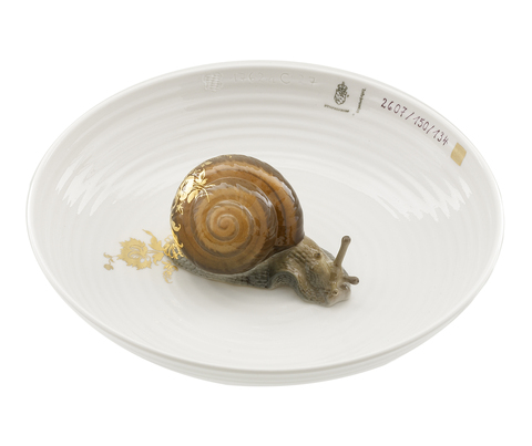 15731_hj_bowl_with_snail_copy_main