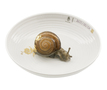 15731_hj_bowl_with_snail_copy_small_carousel
