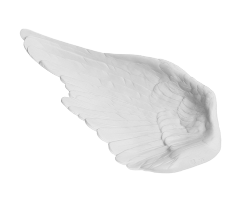 10971_1735_tm_birds_wing_white_bis_main
